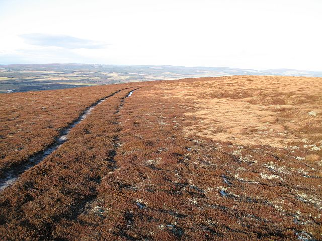 Vehicle track, Meikle Conval