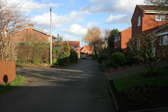 Another view of Far Street, Bradmore