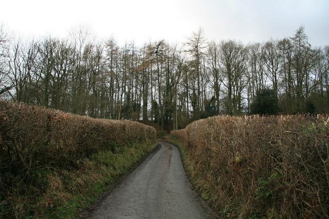 Lane at Hendre