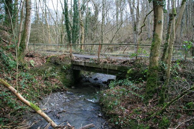 Bridge in Hafod Dingle