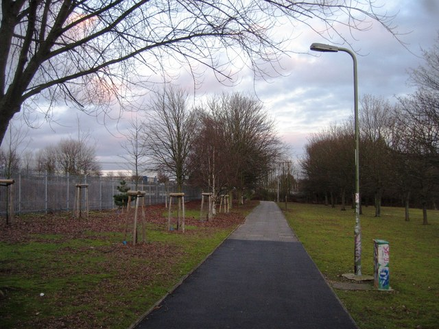Cycle path from Basing View to Daneshill