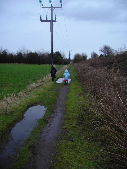 Muddy Raspberry Lane