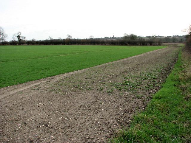Field beside Seamere Road