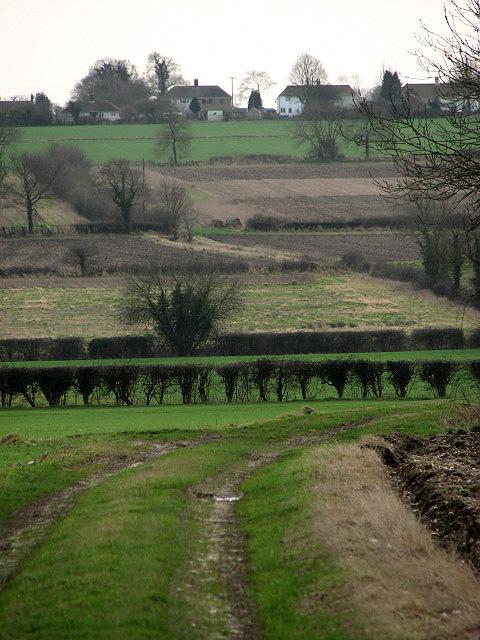 Track leading across fields