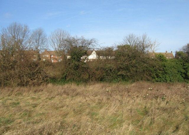 Open land - Lyford Road housing