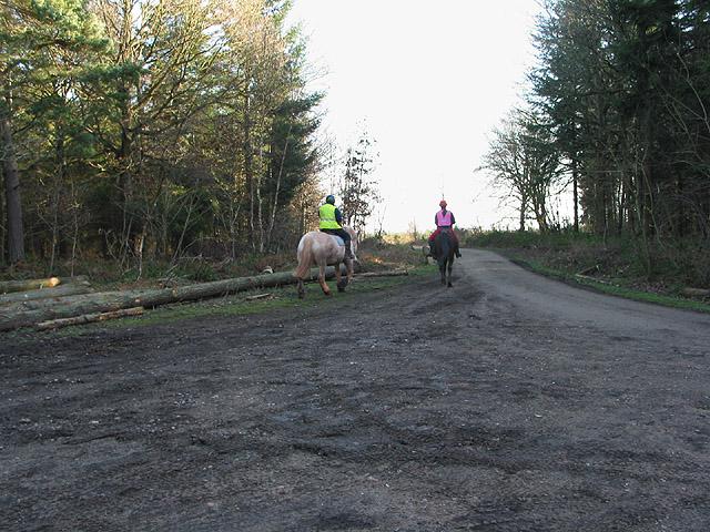 Woodland riders