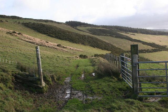 Along Glyndwr's Way