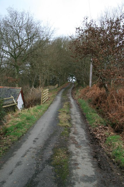 Lane at Maesmawr