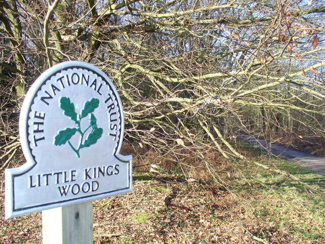 Little Kings Wood