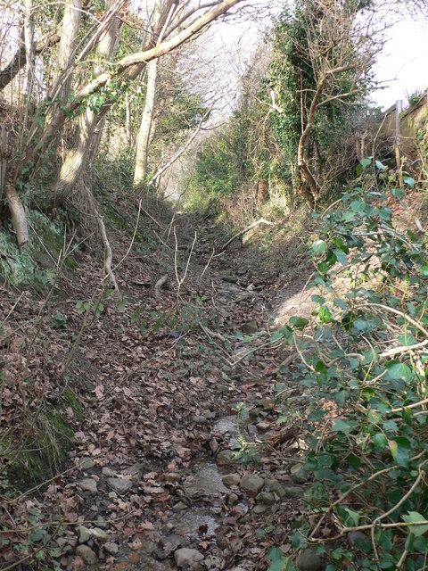 Pennant Walk, near Holywell