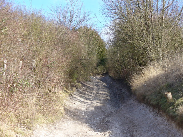 Byway to Hackhurst Downs
