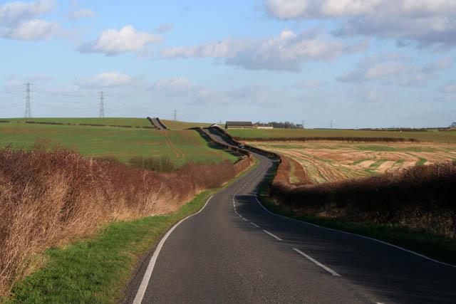 Plumtree Lane