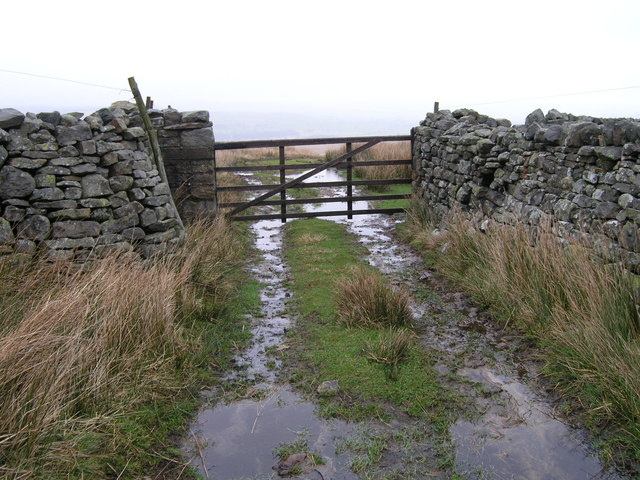 Gate on track between Flout Moor and Black Pasture