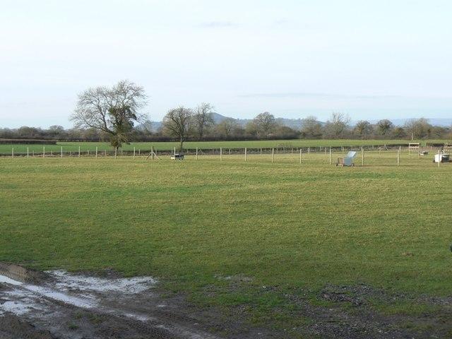 Pastureland at Barton St David