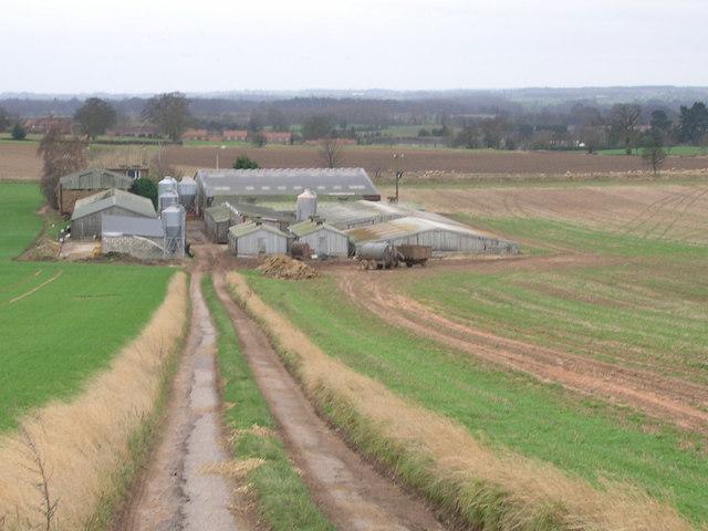 Track descending to High Barn farm