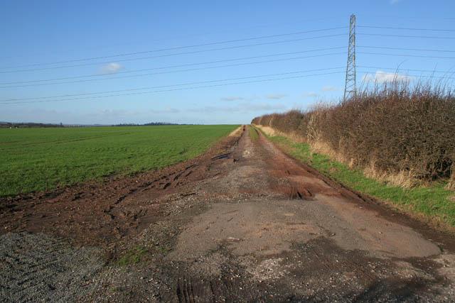 Farm track on Blackcliffe Hill