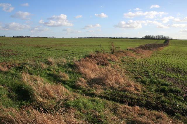 Farmland from Blackcliffe Hill