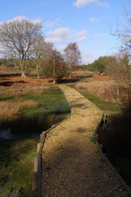 Causeway across the mire, Rakes Brakes Bottom, New Forest