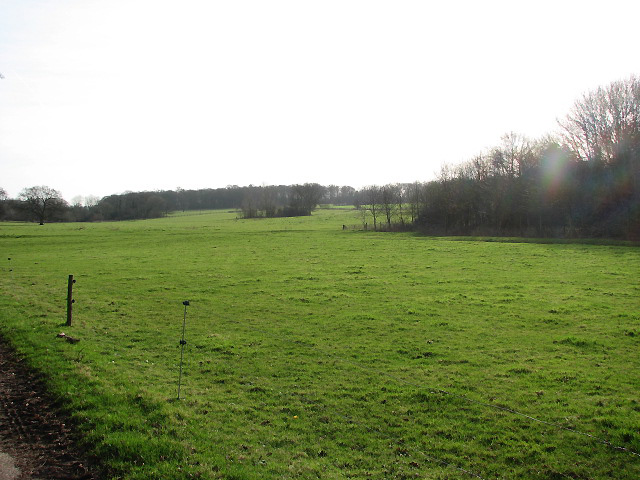 View across large pasture