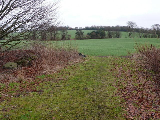 Track and fields near Nether Lennie