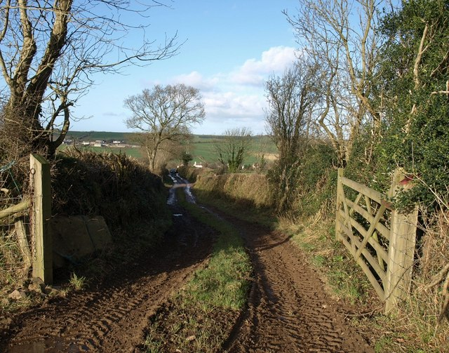 Field access track near Hiscott