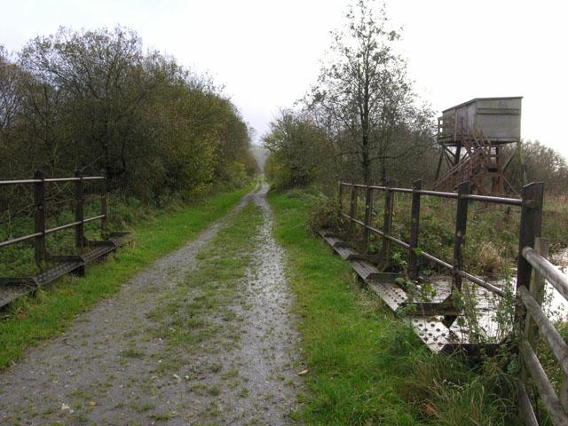 Old railway bridge over the Afon Fflur