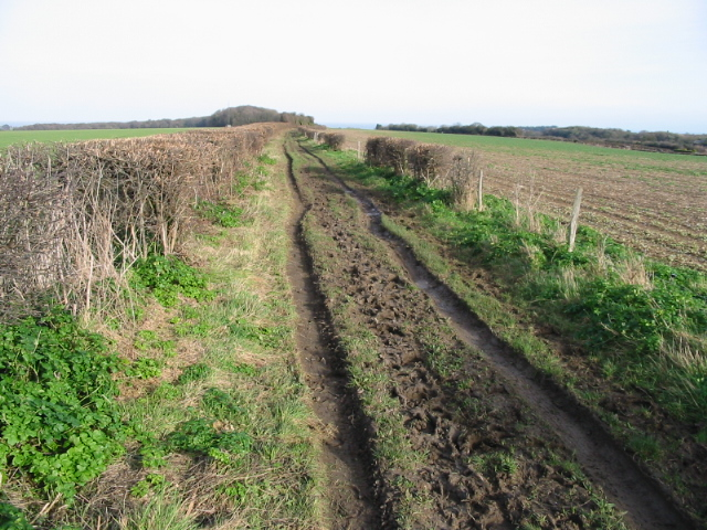 Bridleway from Mill Hill