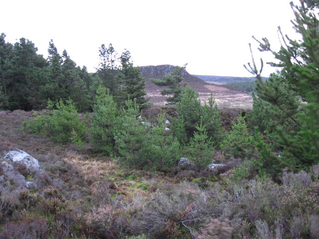 Disused quarry near Aid Crag