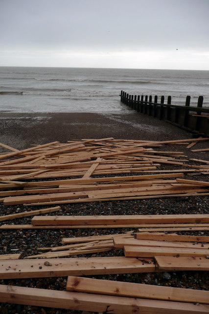 Pine washed up on Worthing Beach