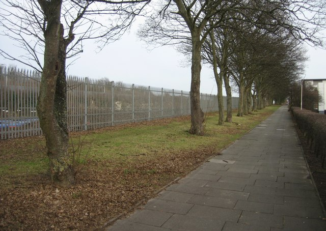 Footpath behind Basing View offices