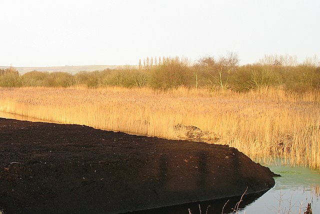 Peat surfaces on Westhay Moor