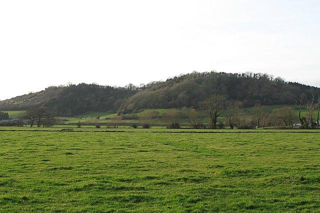 Bower's and Hembury Hills