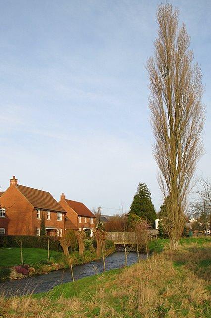 Keward Brook