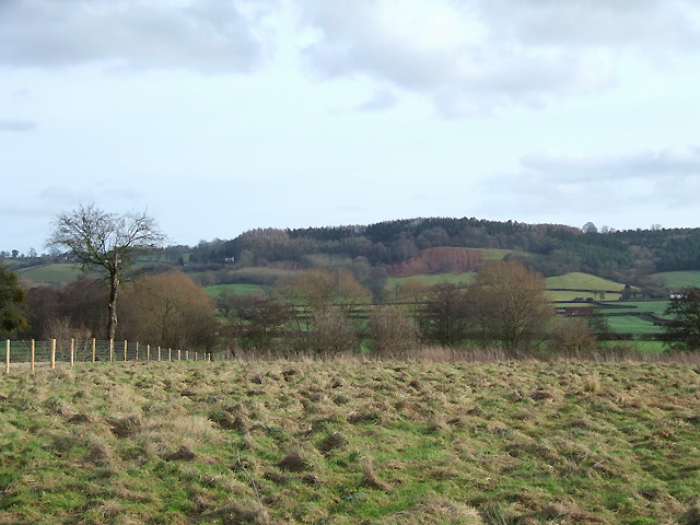 Shropshire Farmland south of Culmington