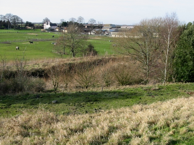 Cottington Court from Fowlmead Country Park