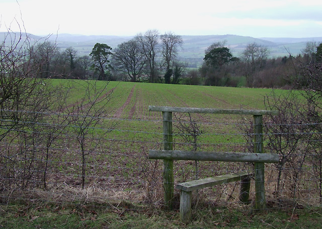Shropshire Farmland (with Stile)