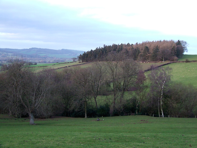 Shropshire Landscape looking towards Peaton