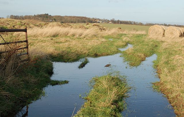 Water at Waterless Farm