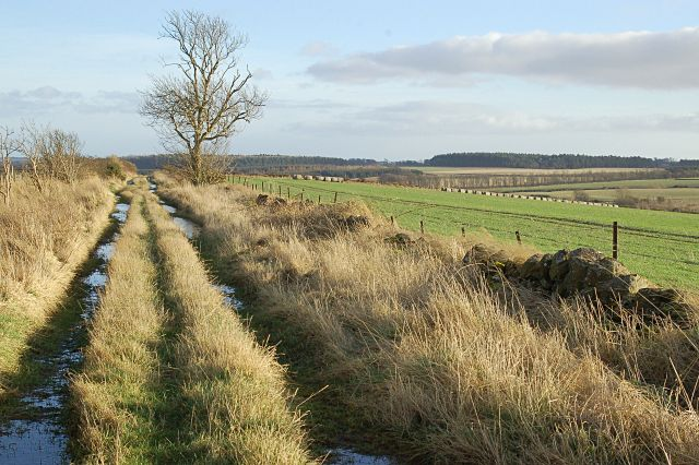 Waterless Farm Road