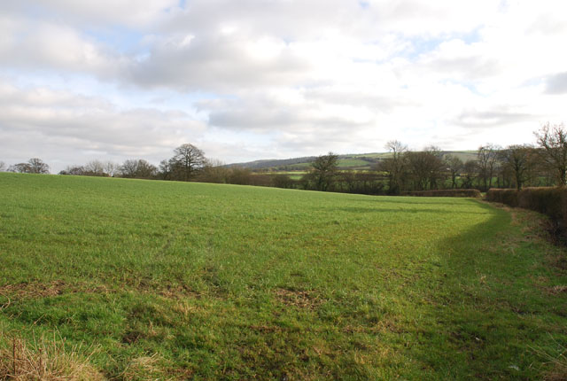 Farmland just outside Okeford Fitzpaine