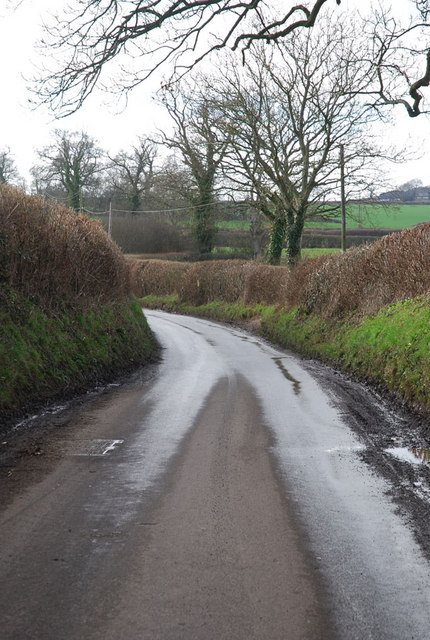 Country road east of Okeford Fitzpaine