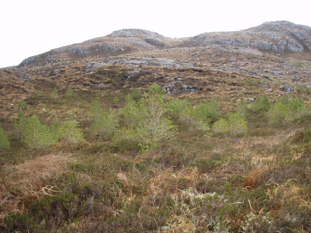 Tree planting on lower slopes of Meall na Mèine