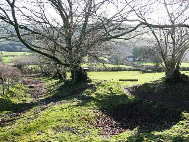 Bridleway off Cefn Gledwen