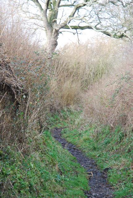 Narrowest part of Stalbridge Lane