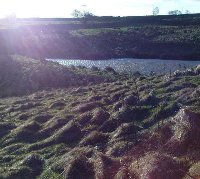 Pond at Greygarth