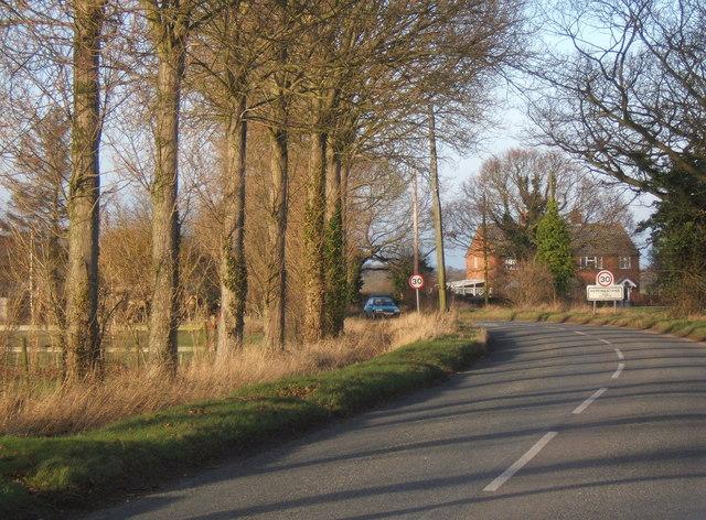 Tree-lined road, Hemingstone