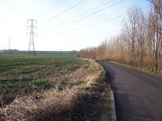 Stickfast Lane