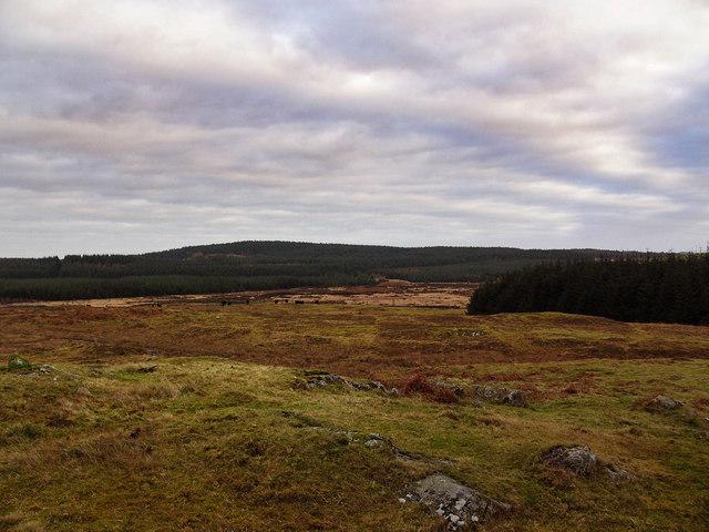 Barlockhart Moor