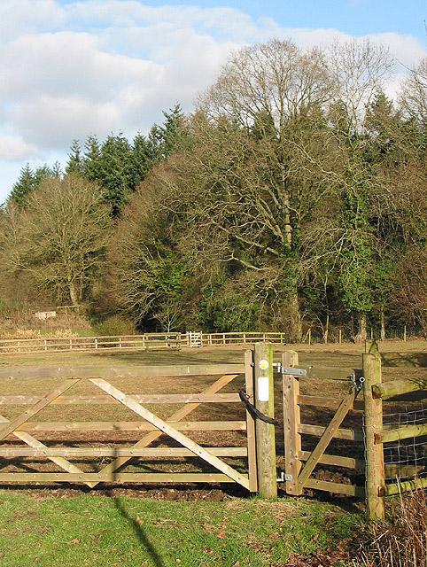 Footpath through a paddock