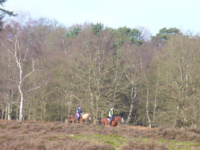 Riders on Albury Heath